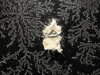 velikobritanskaya-tusovshitsa-frost-uprugie-popki-shortiki-foto