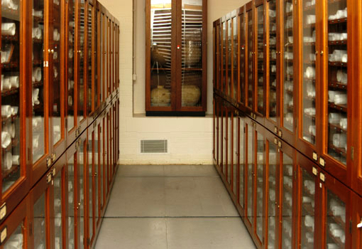 Scroll storage cabinets in the British Library strongroom.